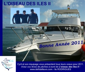 Voeux 2011 !